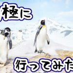 南極に行ってみたい