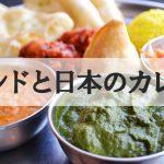 インドと日本のカレー